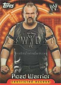 2006 WWE SUPERSTARS subset of 60 cards TOPPS   Insider