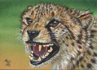 Akiko ORIGINAL ACEO Painting Cheetah Big Cat Wildlife