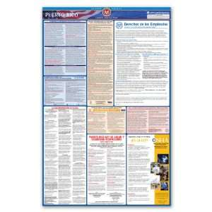 Puerto Rico State and Federal Labor Law Poster   Spanish