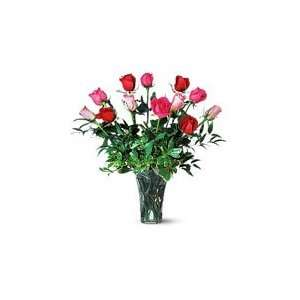 One Dozen Long Stem   Pink and Red Roses Grocery & Gourmet Food